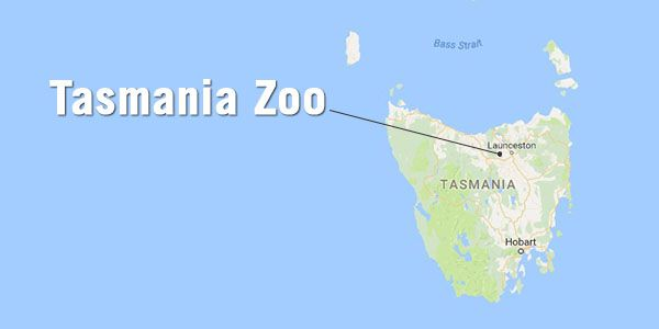 Tasmania Zoo Map Location